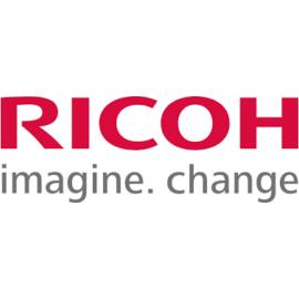 Ricoh AP305/TYPE306 toner ORIGINAL yellow LEÉRTÉKELT(400990)